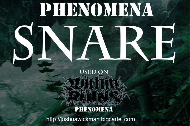 Image of Phenomena Snare