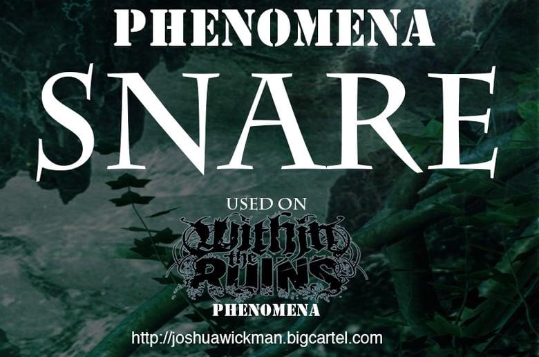 Image of Phenomena Snare