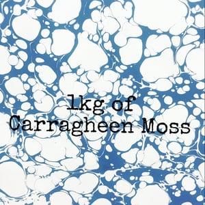Image of 1 KILO of Carragheen Moss powder