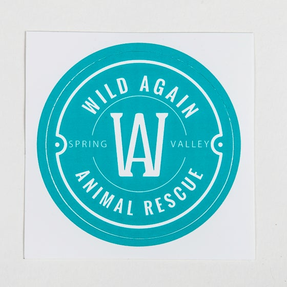 Image of Wild Again Sticker - Turquoise