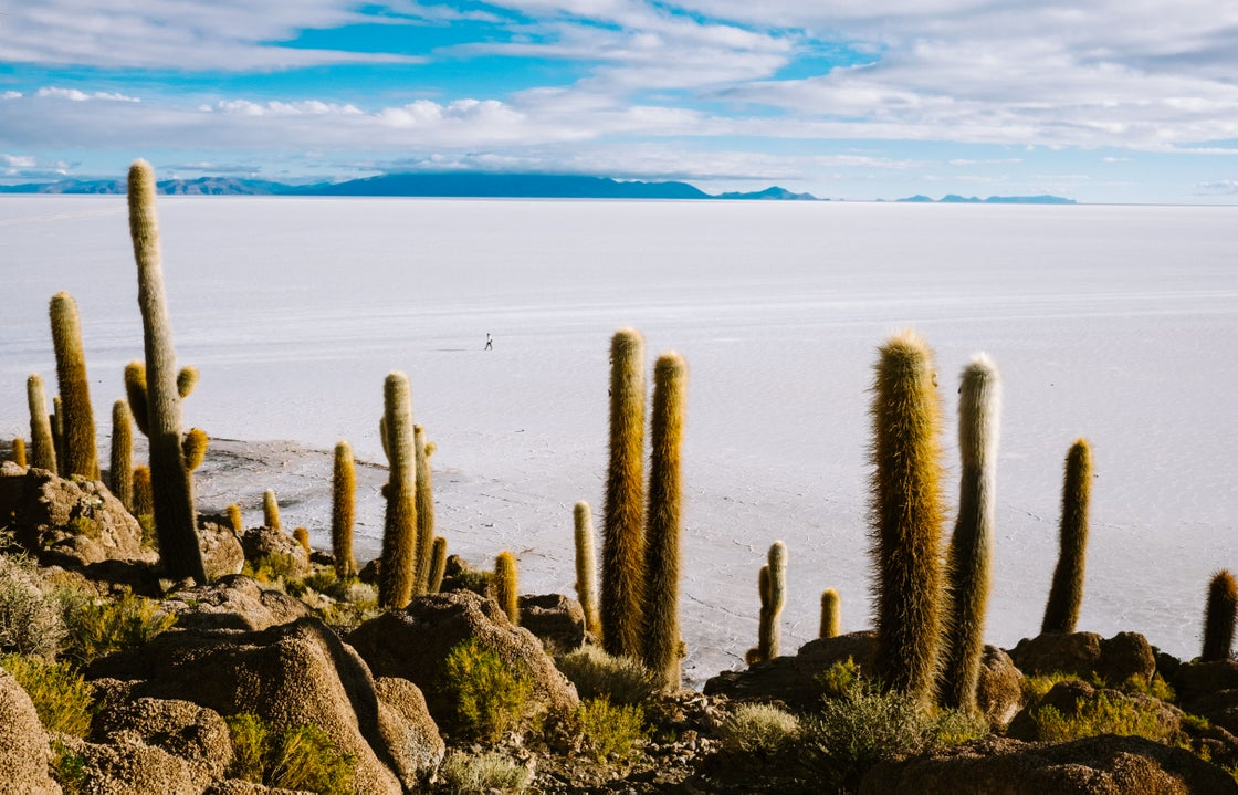 Image of Southwest Bolivia