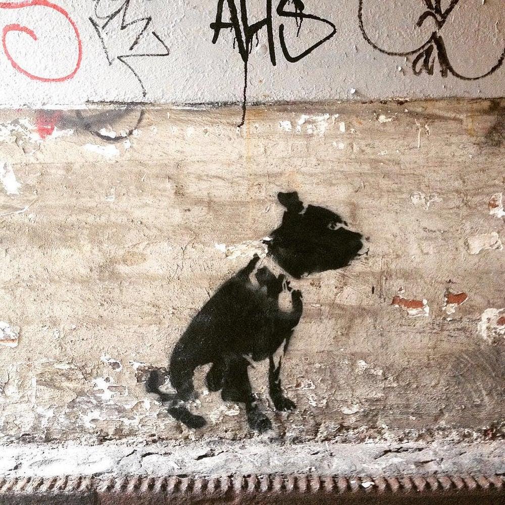 Image of Dog on paper - Screenprint