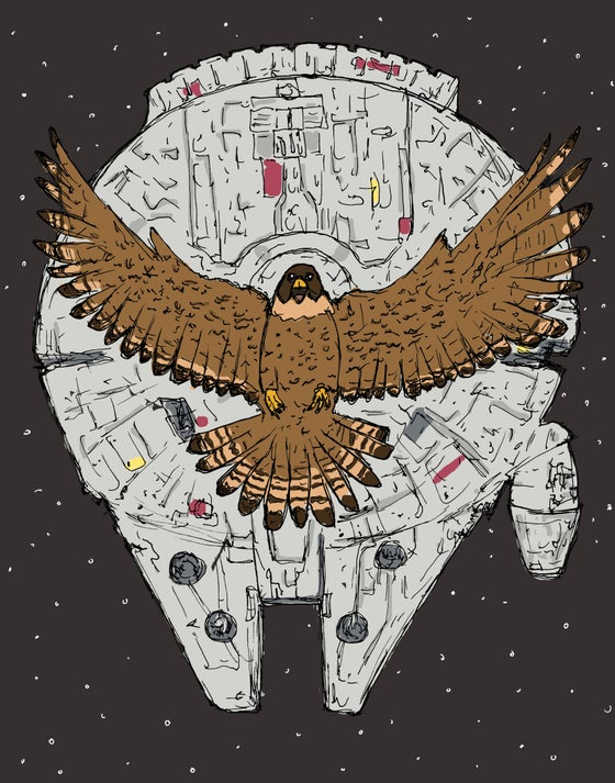 """Image of """"Falcon of the Millennium"""""""