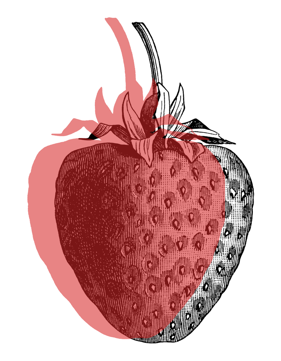 Image of Stay In Time - Strawberry