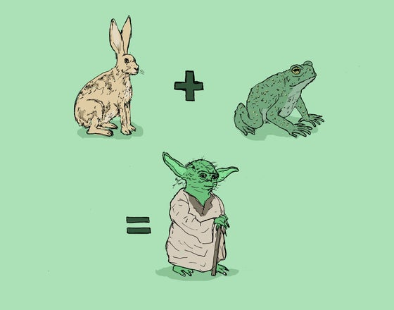 "Image of ""Yoda Math"""