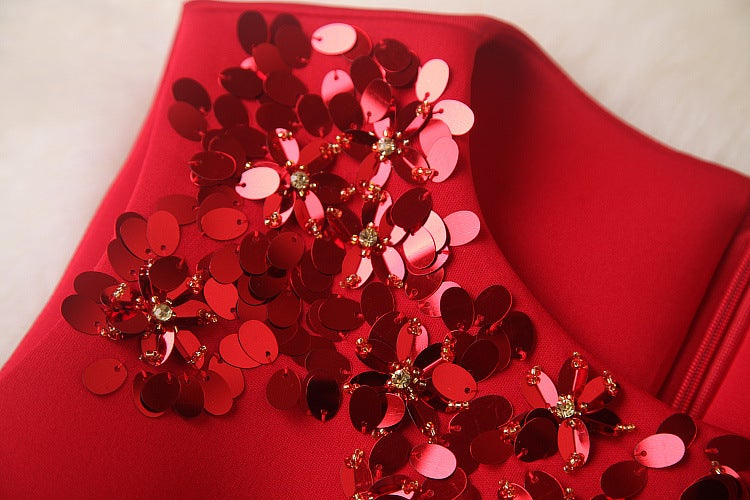 Pretty Red Short Formal Dresses, Winter Formal Dresses, Red Women Dresses
