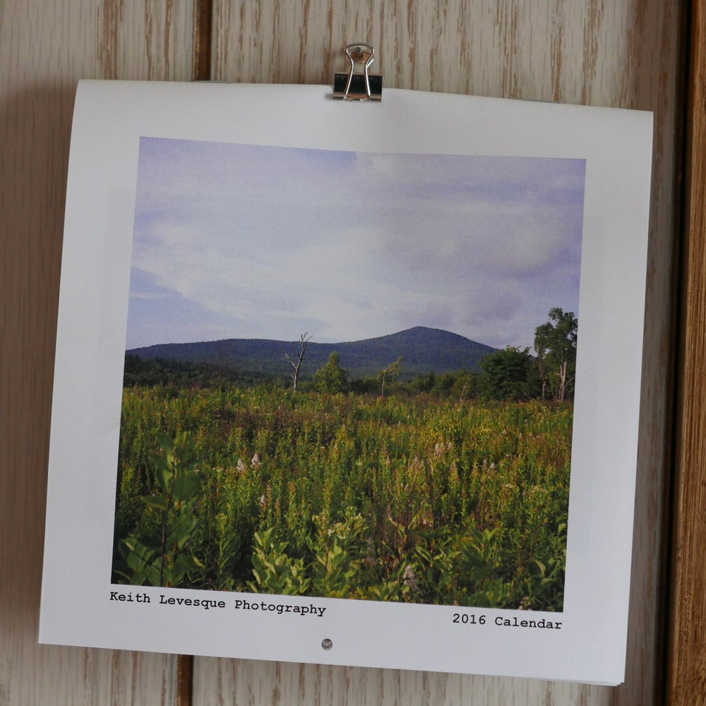 Image of 35mm 2016 Calendar