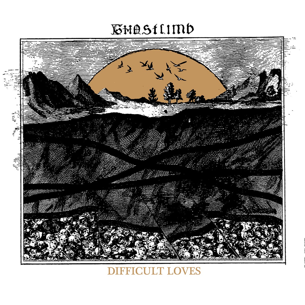 "Image of GHOSTLIMB ""DIFFICULT LOVES"" LP"