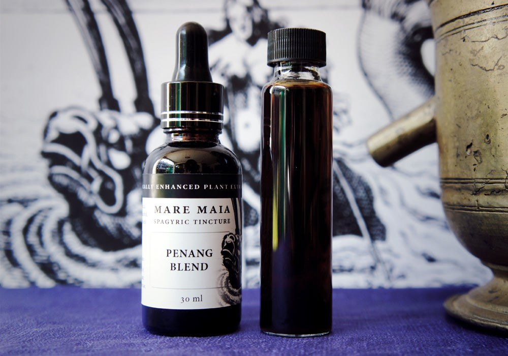 Image of PENANG BLEND spagyric tincture - alchemically enhanced plant extraction