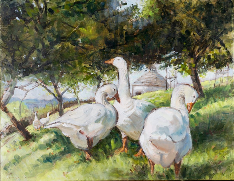 Image of 'Dovecote Geese'
