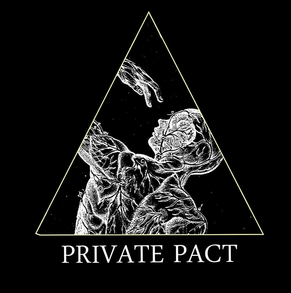 "Image of Private Pact ""Purity"" LP OUT NOW"