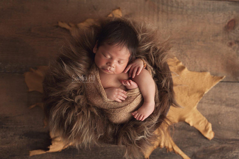 Image of Genuine Sheepskin Long Fur in Brown