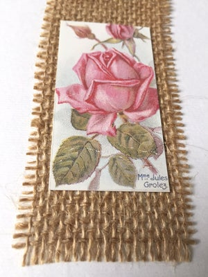 Image of Rose Picture Card