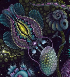 """Image of MICROVERSE II ~ 20 x 20"""" Signed Open Edition"""