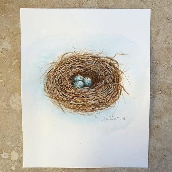Image of Nesting