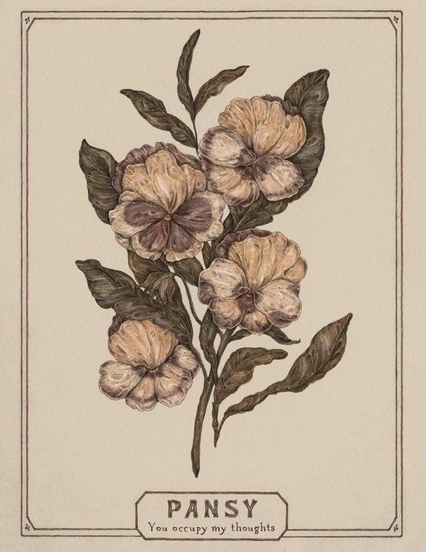 Image of Pansy card