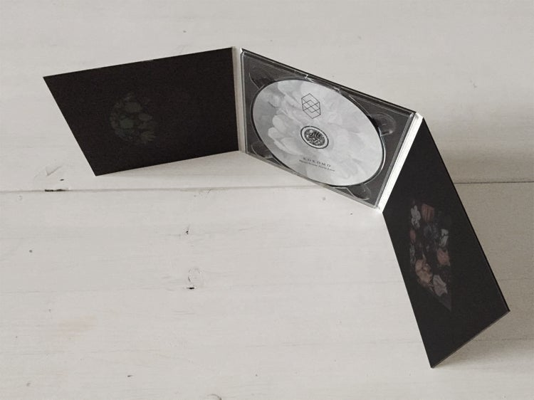 Image of Monochrome Noise Love CD