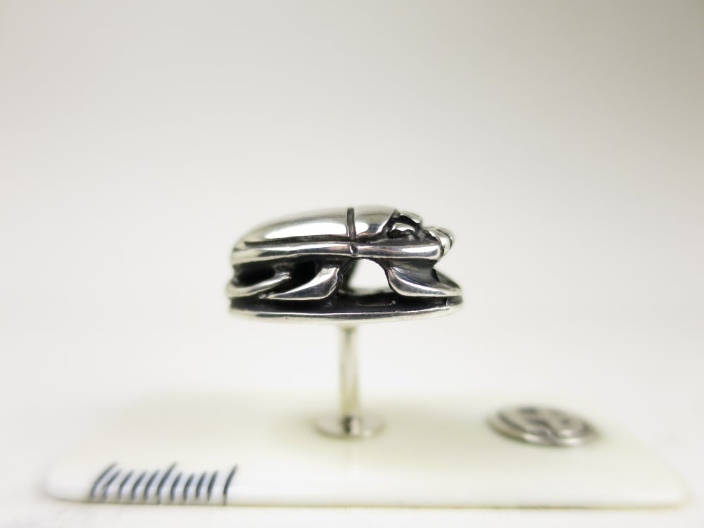 Image of Scarab