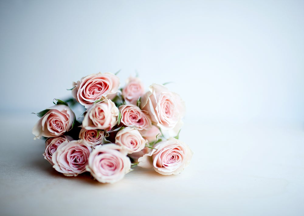 Image of Pink Cream