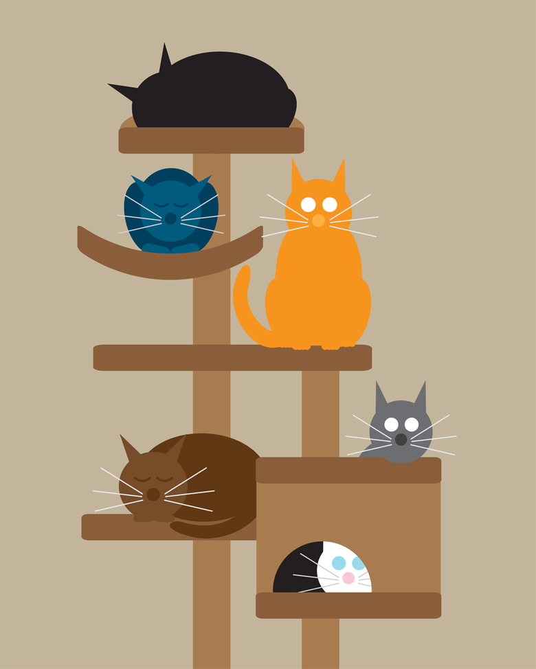 Image of Mulit Cat Collection