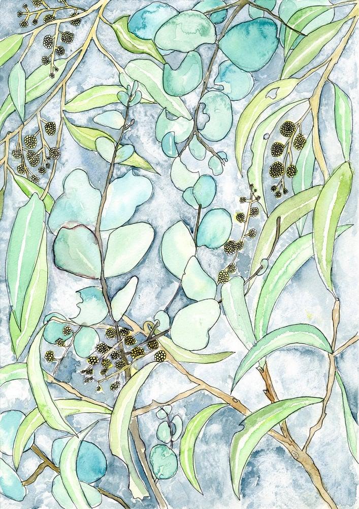 Image of Snowy Gum - Print