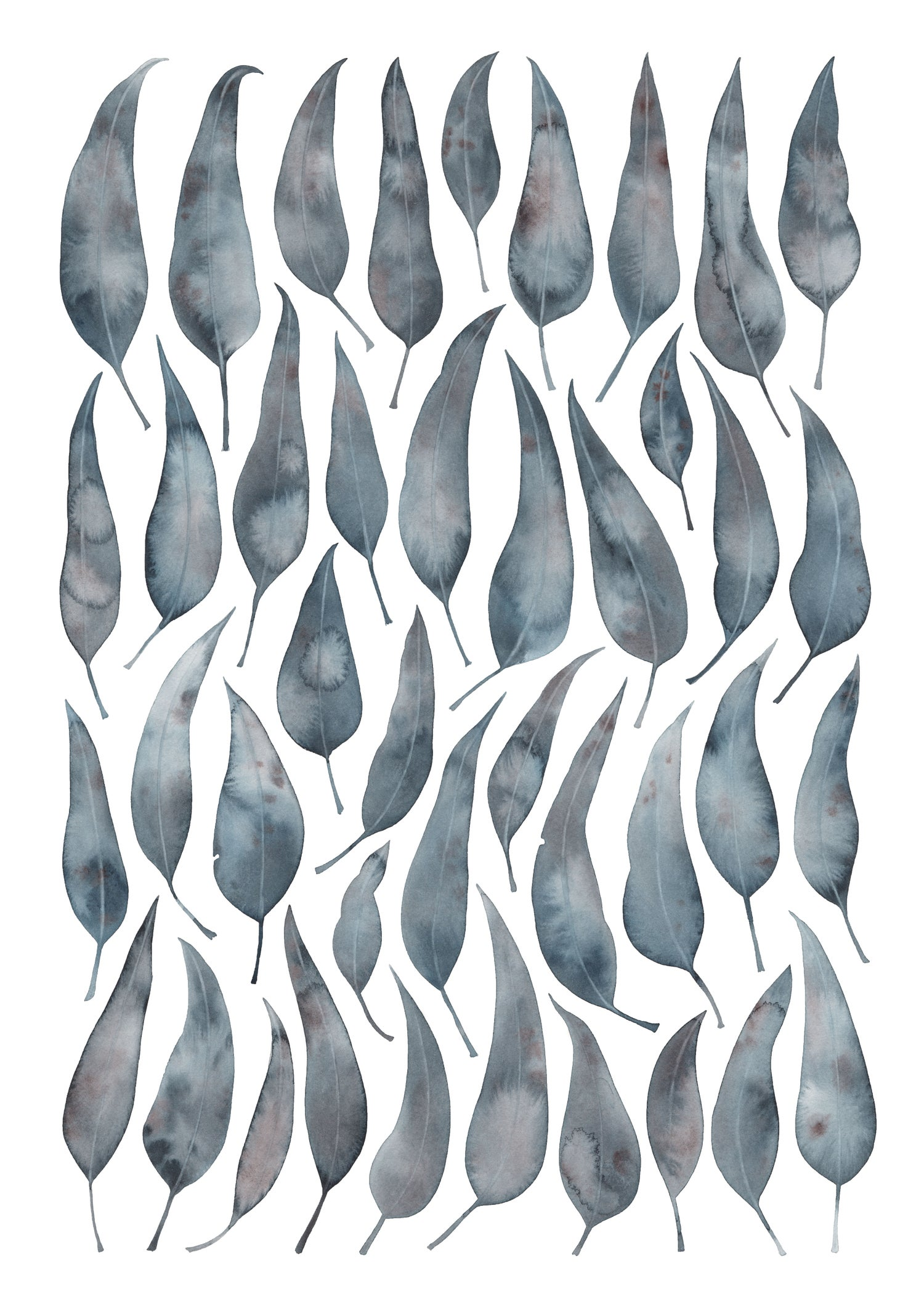 Image of Silver Princess Eucalyptus Leaves fine art print