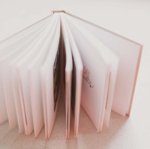 Image of BIG RAD BOOK