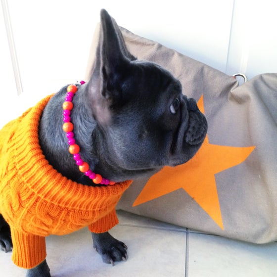 Image of Clementine ~ Orange & Hot Pink Beaded Dog-Necklace