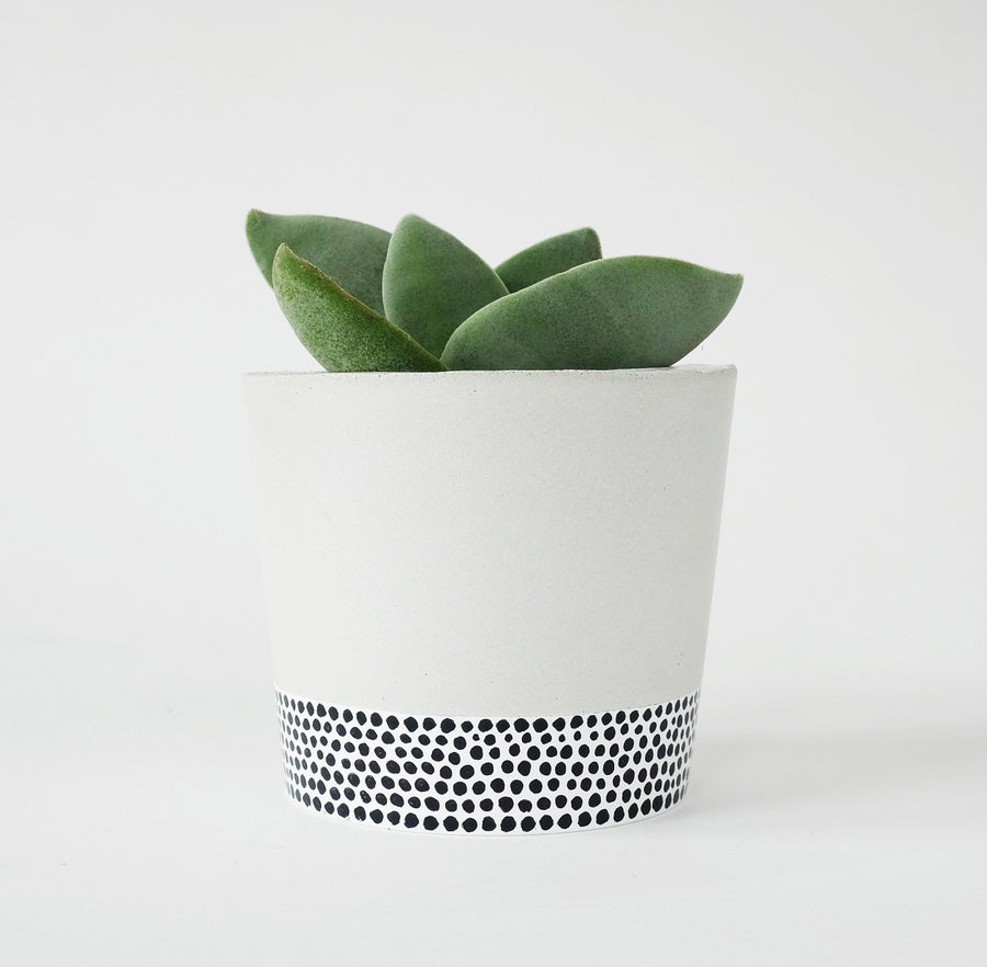 Image of Planter - Round [Tiny Dots]