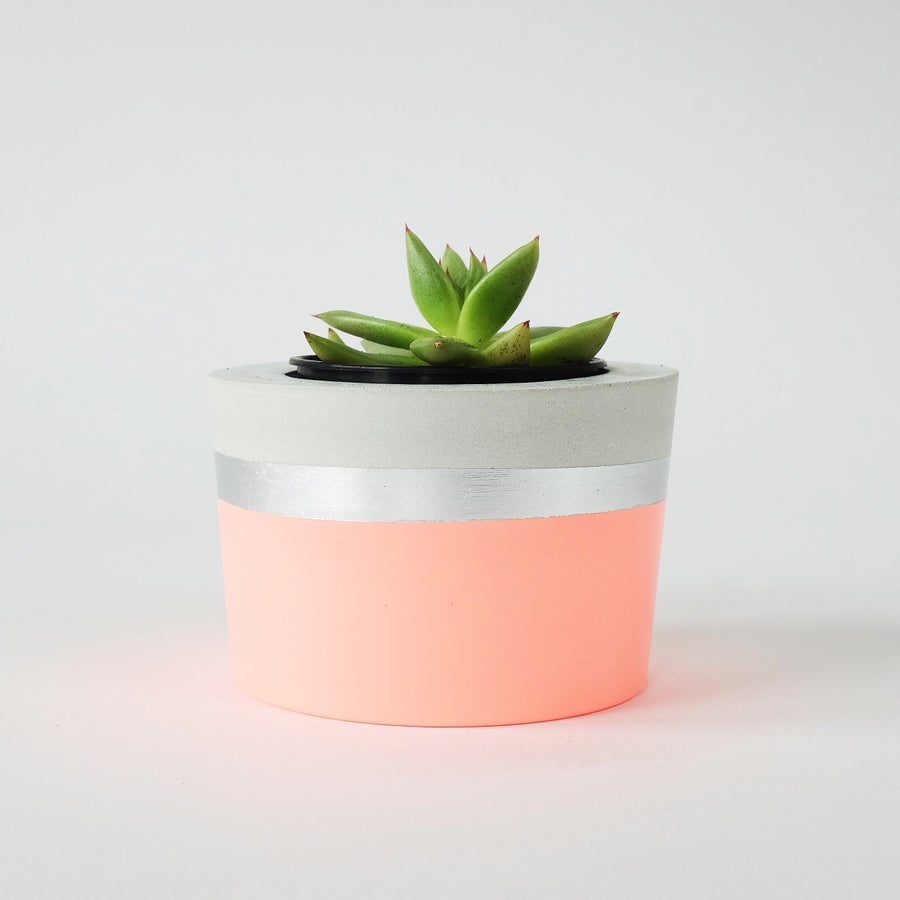 Image of Planter - Round [Fluro Peach + Silver]