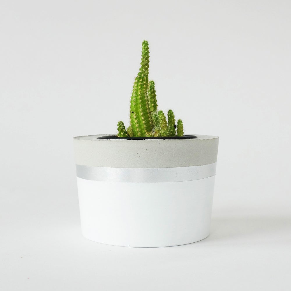 Image of Planter - white + silver