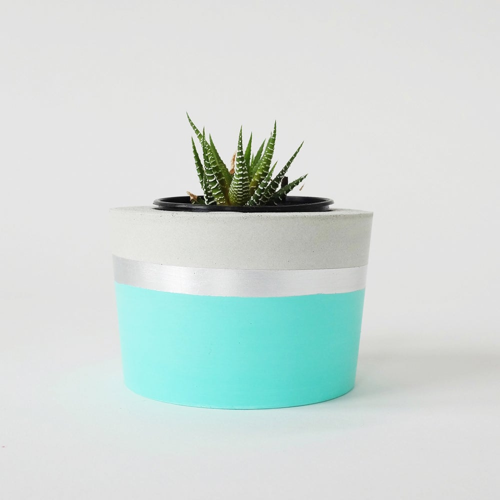 Image of Planter - mint + silver