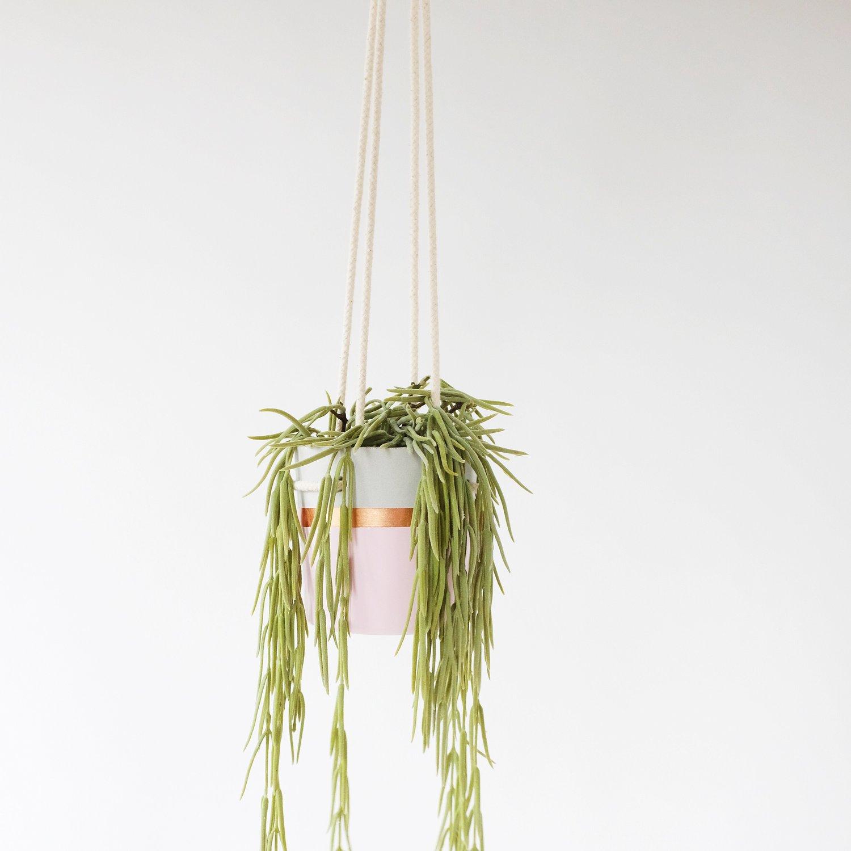 Image of Hanging Planter