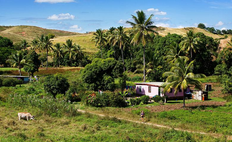 Image of Rave Runs - Fiji