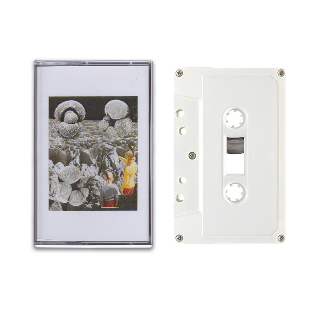 Image of NORTH2NORTH - CHEMICAL GARDEN CASSETTE + DIGITAL DOWNLOAD