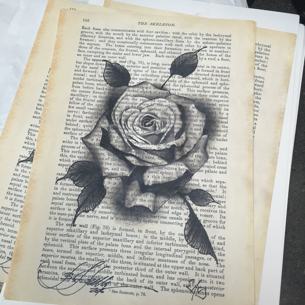 Image of Rose print