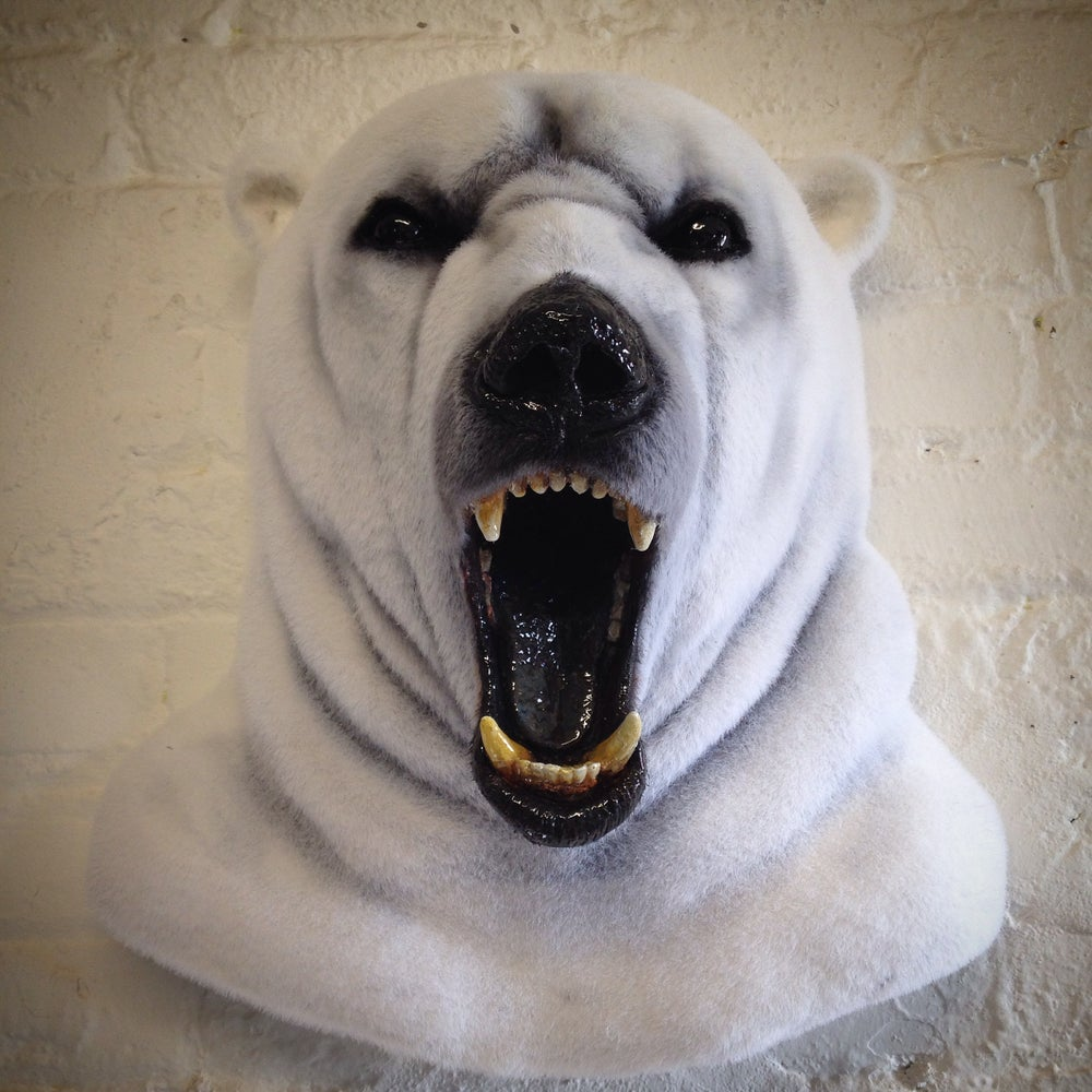 broken hare faux taxidermy polar bear head