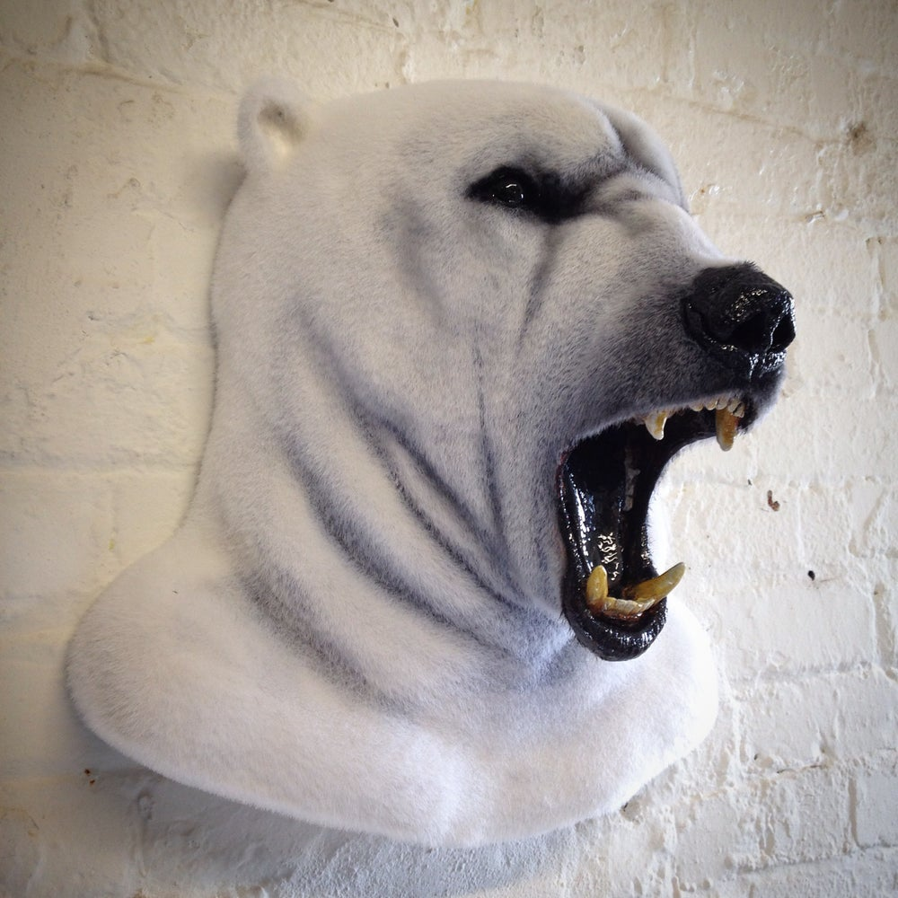 Image of Faux Taxidermy Polar Bear Head
