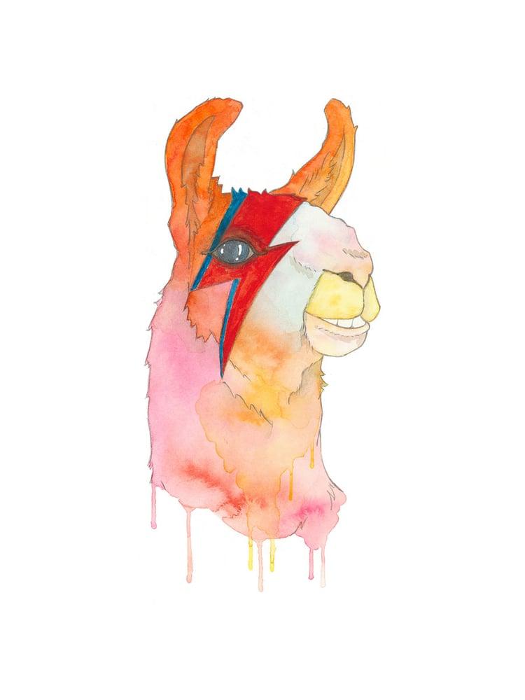 "Image of A-Llama Sane Print, 9""x12"""