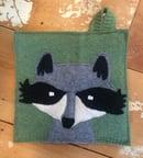 Image 1 of Raccoon Mugshot