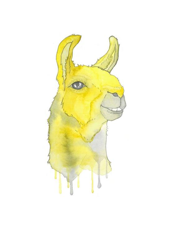 Image of yellow llama print