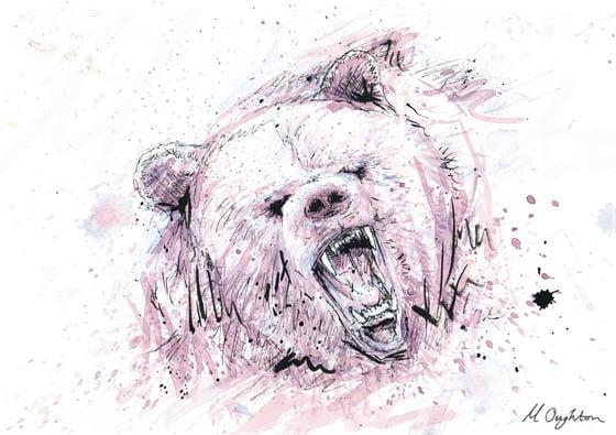 Image of 'Black Bear 1' - PRINT