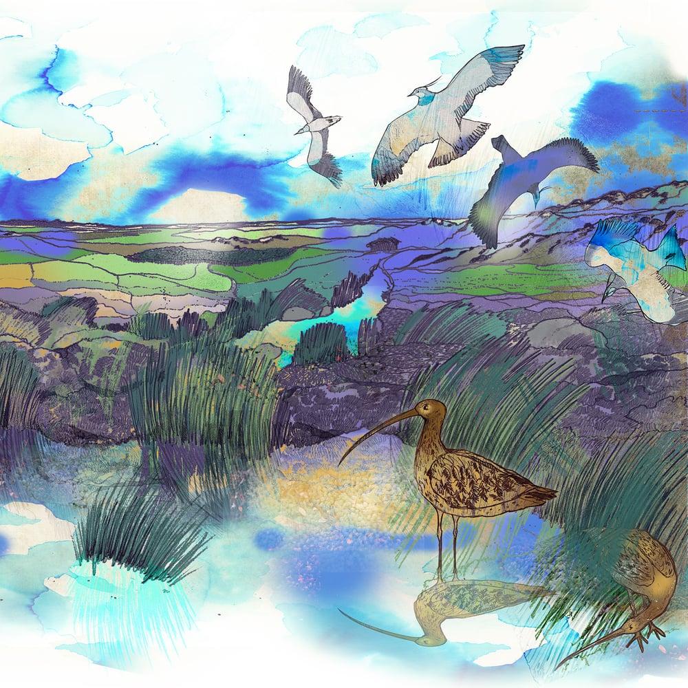 Image of High Moors - Greetings Card