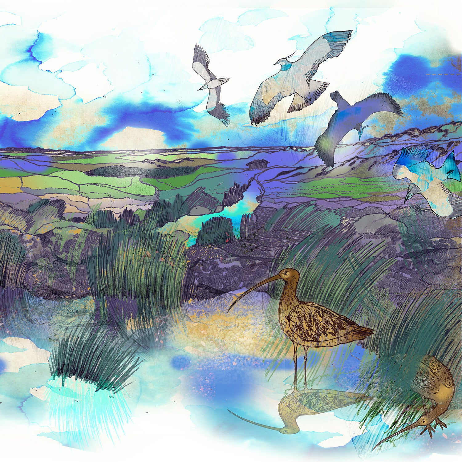 Image of High Moors - Greetings Card
