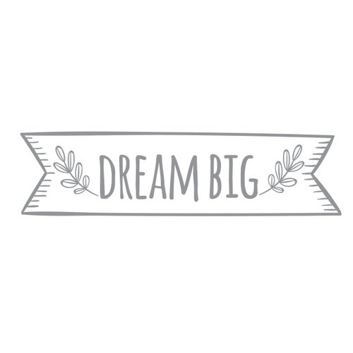 Image of Vinilo Dream Big gris