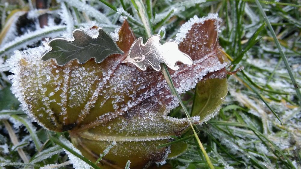 Image of Silver Oak Leaf Earrings