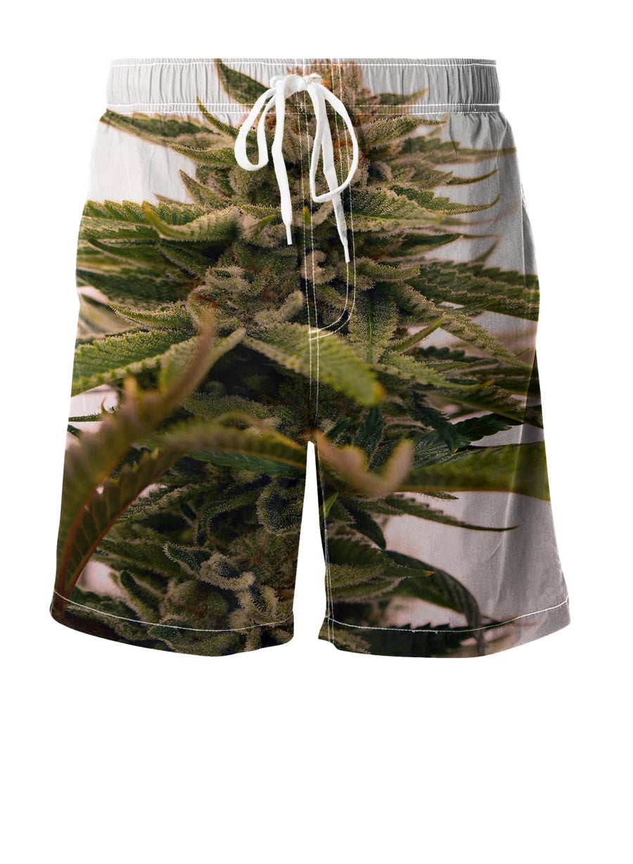Image of Tangerine Power Boardshorts