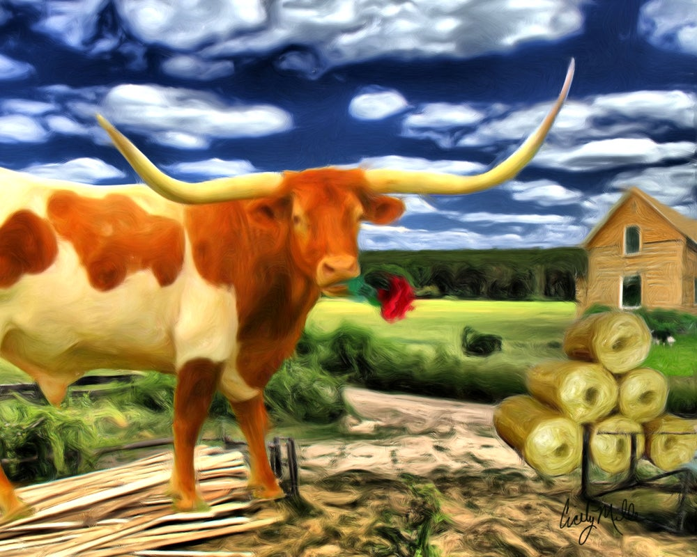Image of Romantic Longhorn
