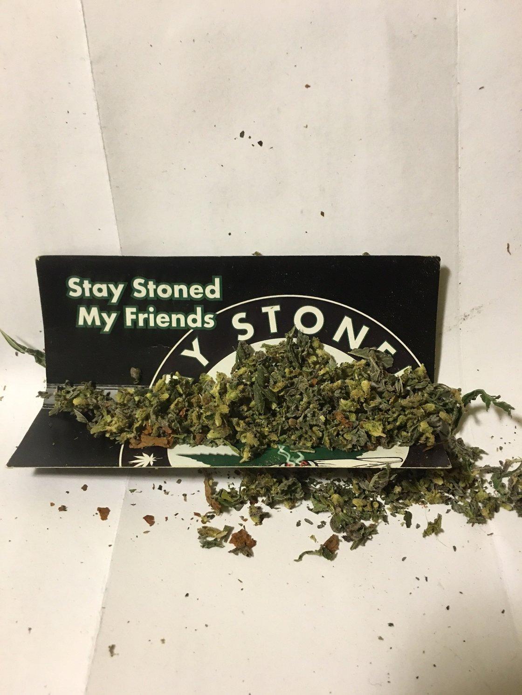 Image of Weed Words Hoodie