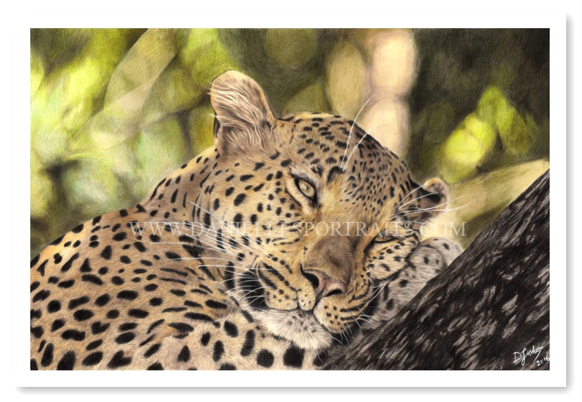 Image of Do Not Disturb - Limited Edition Print